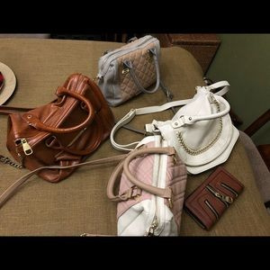 Steve Madden purse Collection & Wallet